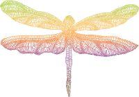 Rainbow Dragonfly Reiki - Regebogen Libelle Reiki