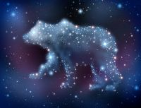 Fae Spirit of the Bear Lightwork - Feen-Geist des Bären