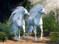 Myst of the Unicorn Reiki Lightwork - Mysterium des Einhorns