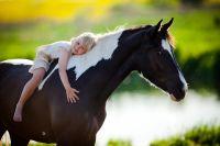Communication With Animal Empowerment - Kommunikation m. Tier