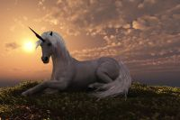 Unicorn Animal Meditation Empowerment - Einhorn