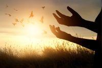 Vergebung Freiheits-Strahlen (Forgiveness Freedom Rays)