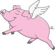 Arkan Sonney Fairy Pig - Feen Schwein