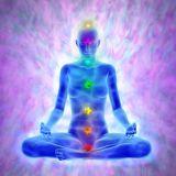 7 Chakra Light Nectar - 7 Chakren Lichtnektar