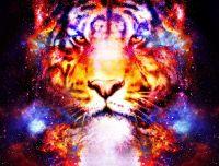 Ethereal Tiger Force - Ätherische Tigerkraft