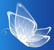 Weißer Schmetterling von Hera