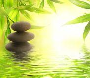 Natural Healing Enhancement - Natürliche Heilungsverbesserung