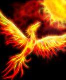 Phoenix Fire Essence - Phönix Feuer Essenz