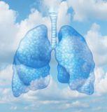 Lung Adaptation Essence - Lungenanpassungsessenz