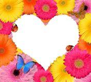 Self Love Reiki (English)