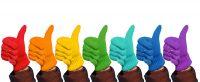 Glove System Gesamtpaket